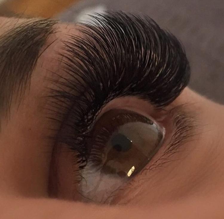 Eyelash Extension Supplies L Qu Bee Lashes