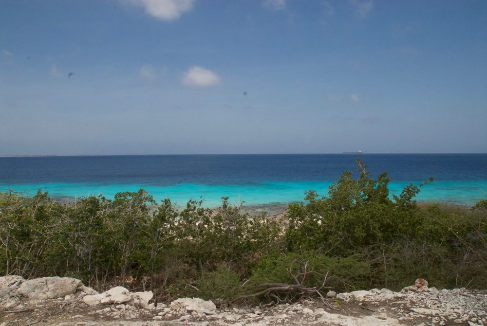 Bonaire - The Best shore diving in the world
