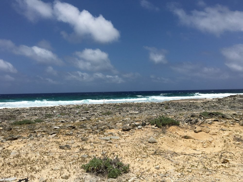 Bonaire's east side boasts stunning views of the ocean.