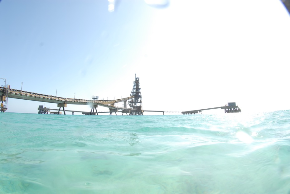 Bonaire's Salt Pier - considered one of the best dive sites on the island.