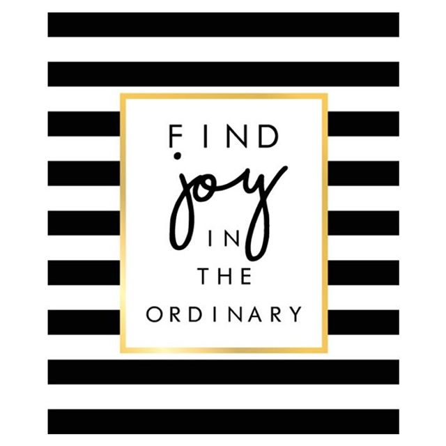 Find joy in the ordinary...but find excitement in the un-ordinary. Our magnetic brooches are just that 😉