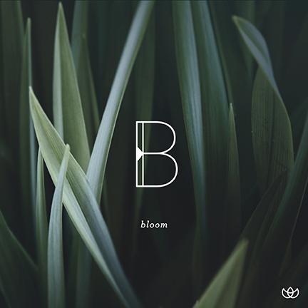 ws_bloom.jpg