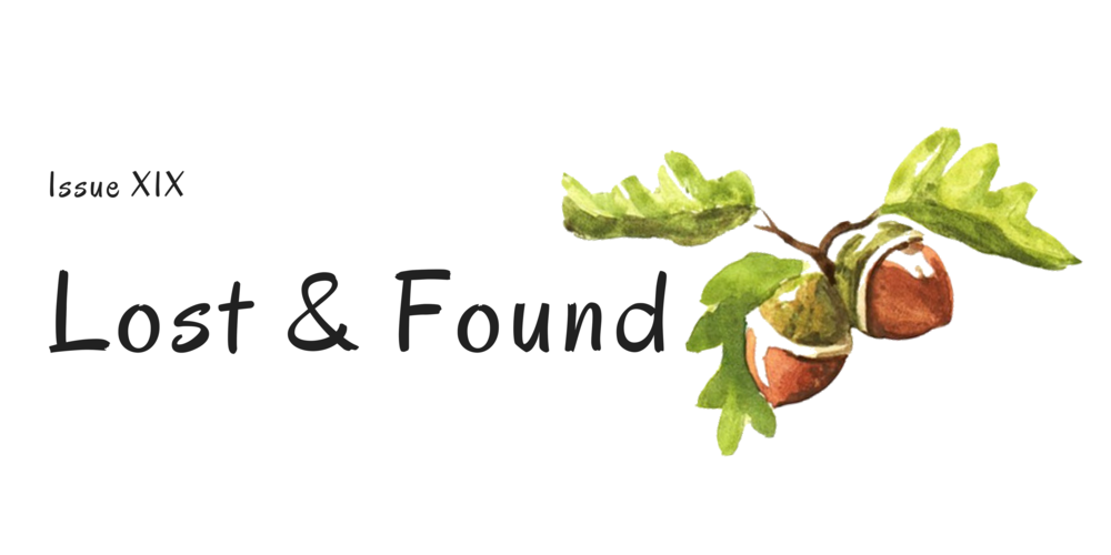 Issue XIX_ Lost & Found Cover.png