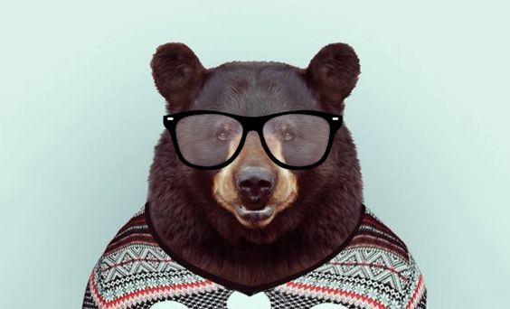 geek_bear.jpg