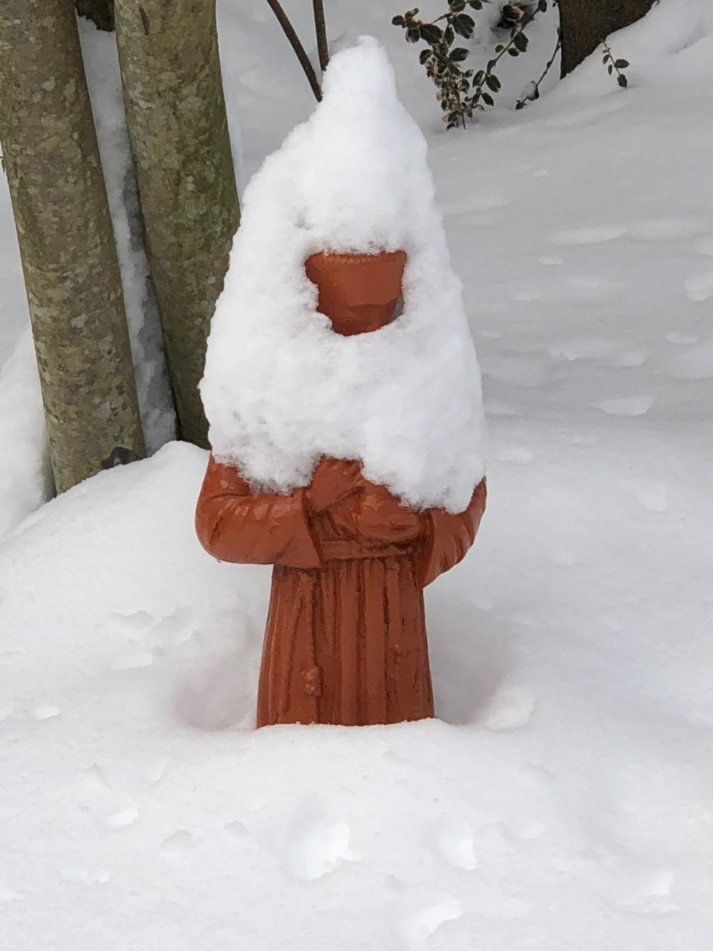 St. Francis in our yard, wearing his winter cape.