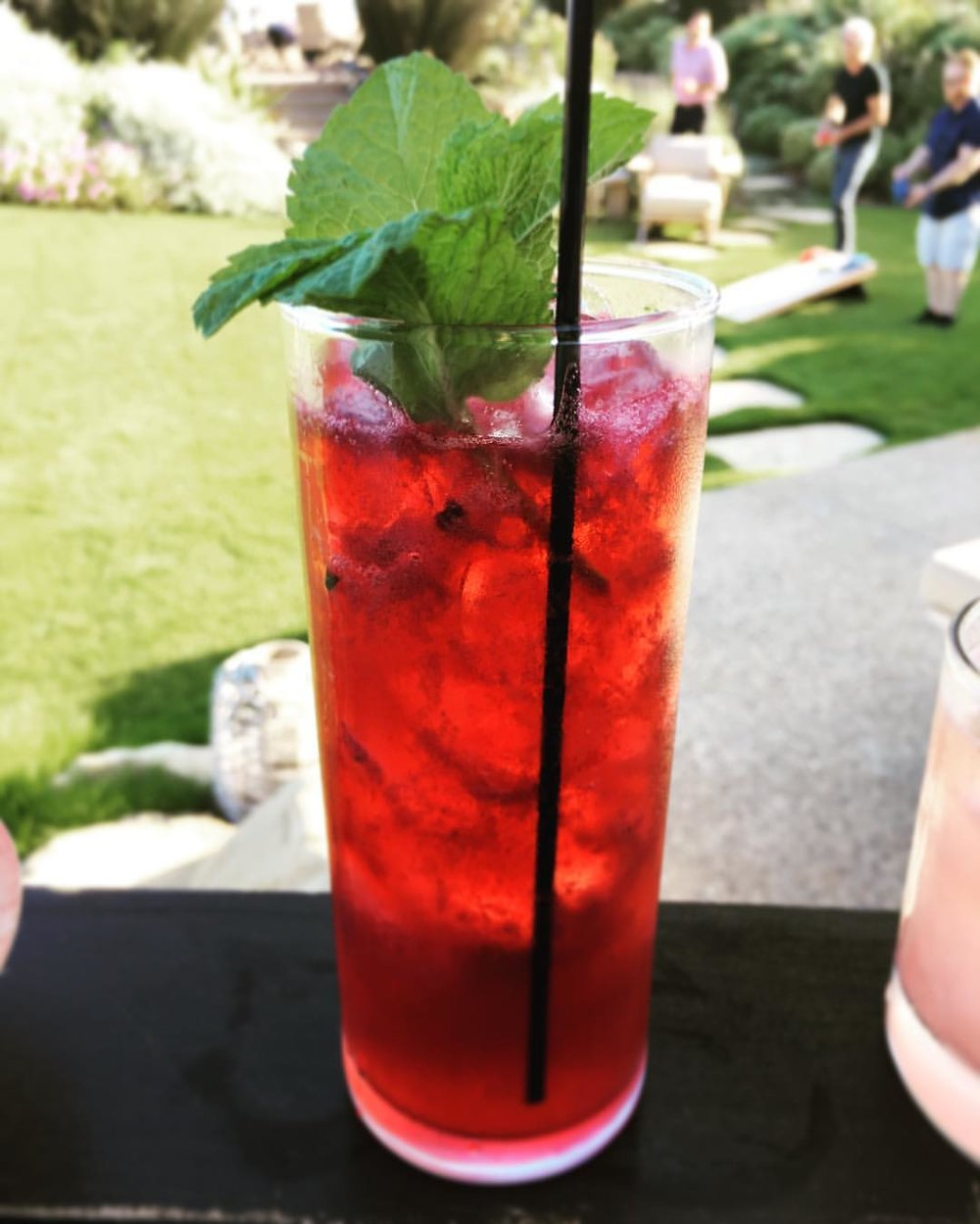 Berries & Twigs  Vodka  ● Blackberries ● Mint ● Raspberry ● House Grenadine ● Lemon ● Bubbles