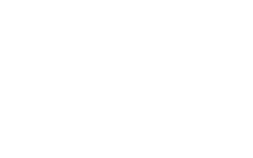 Flee The City!-logo-white.png