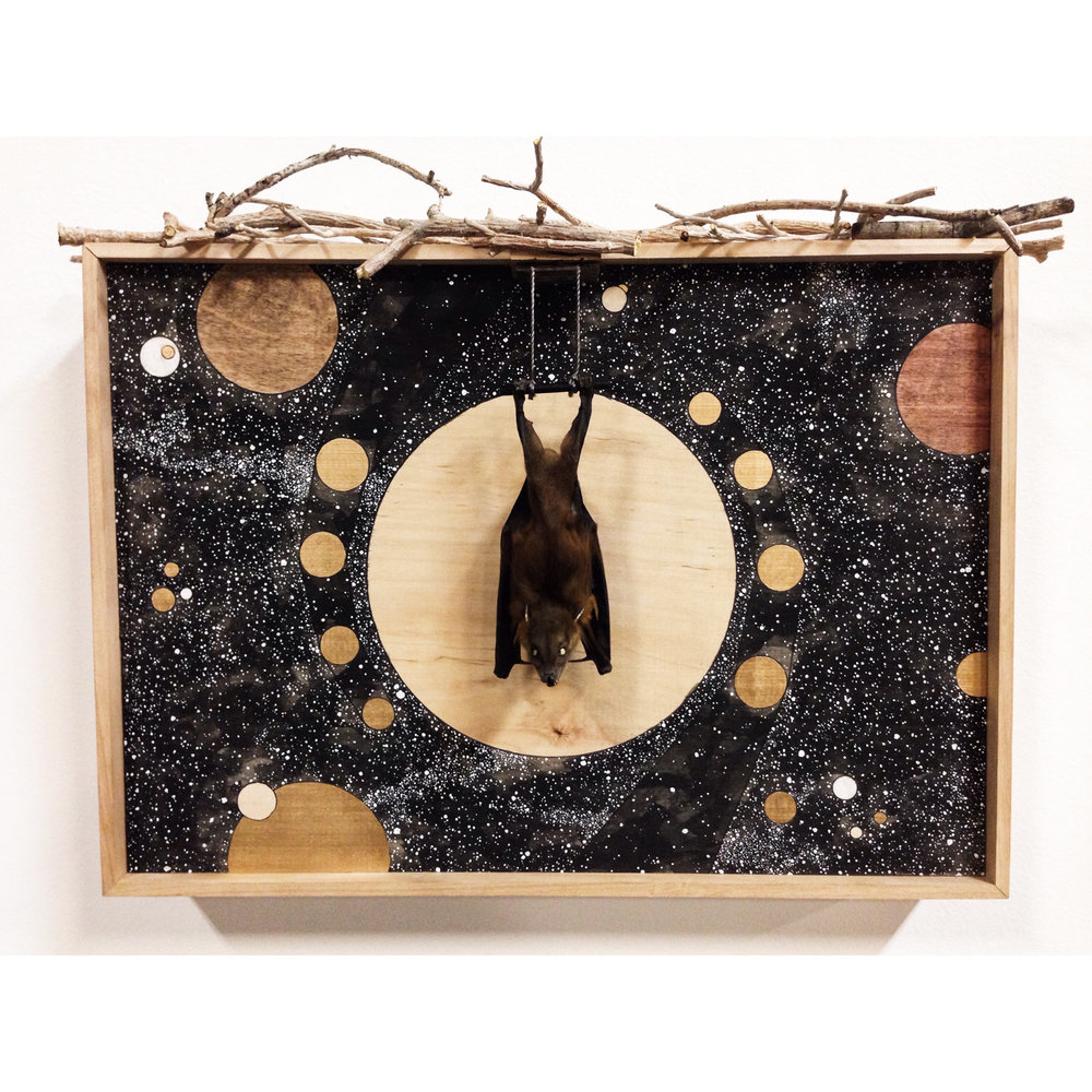 "20x12"" ink/pen/acrylic/gold paint/stain/taxidermy bat/found sticks on wood panel, framed"