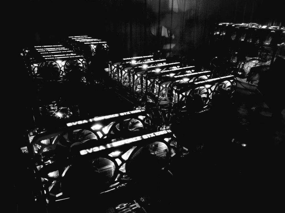 walton dark.jpg