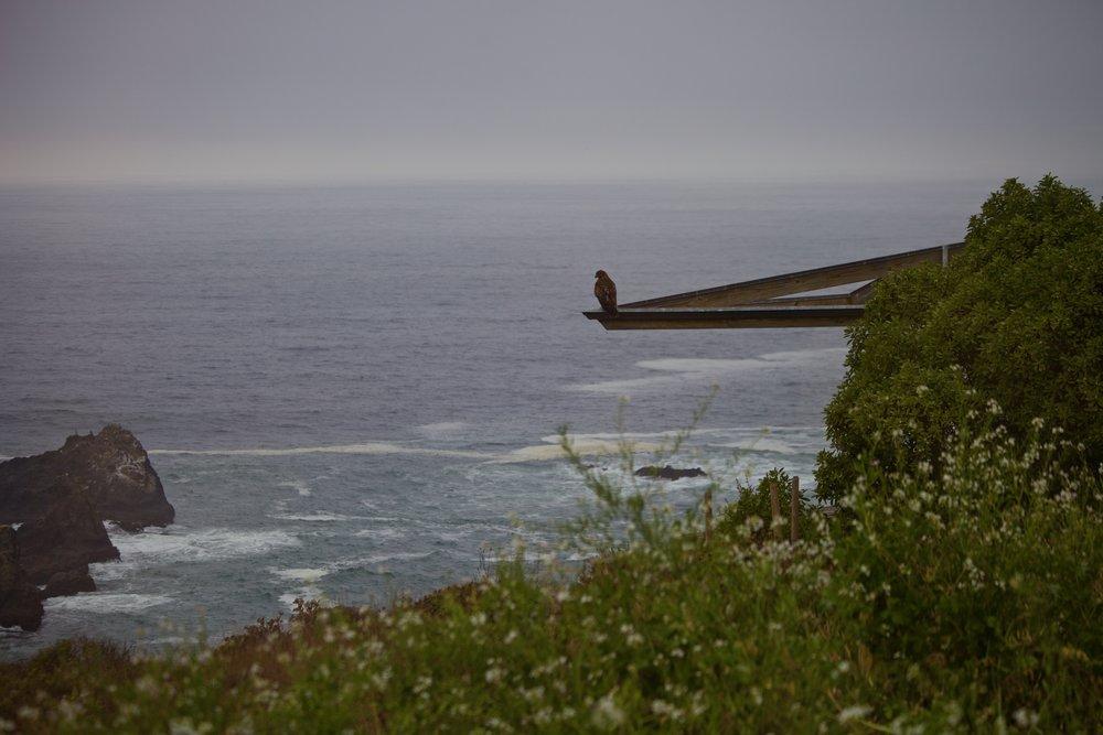 ocean_naturephoto.jpg