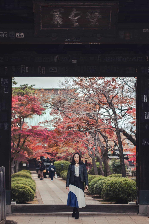 Tokyo photographer hire freelance travel casual candid Japan (10).jpg