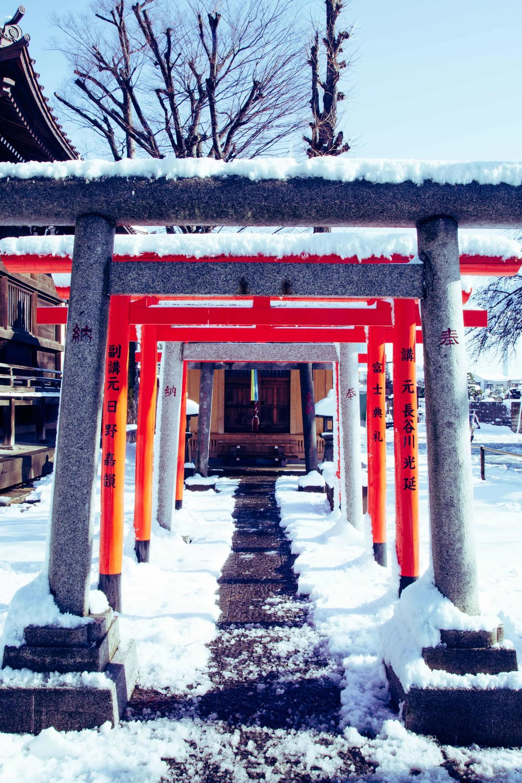 Tokyo photographer hire freelance travel casual candid Japan (8).jpg