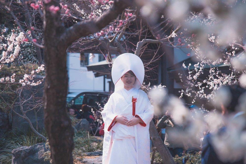 Tokyo photographer hire freelance travel casual candid Japan (1).jpg