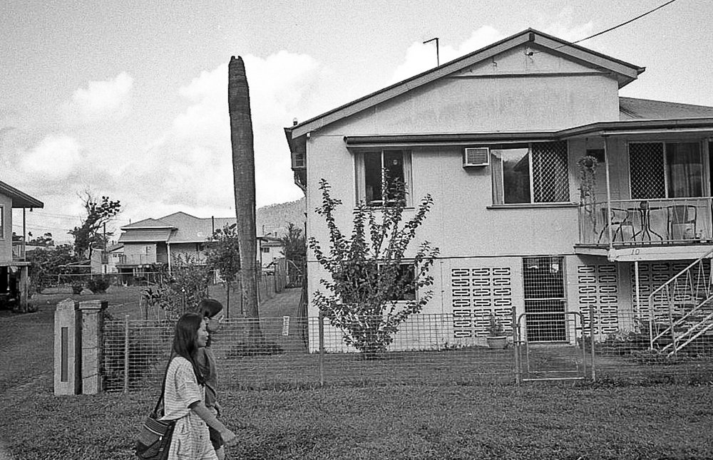 Seasonal workers walk past a house. In the yard is a dead palm tree.
