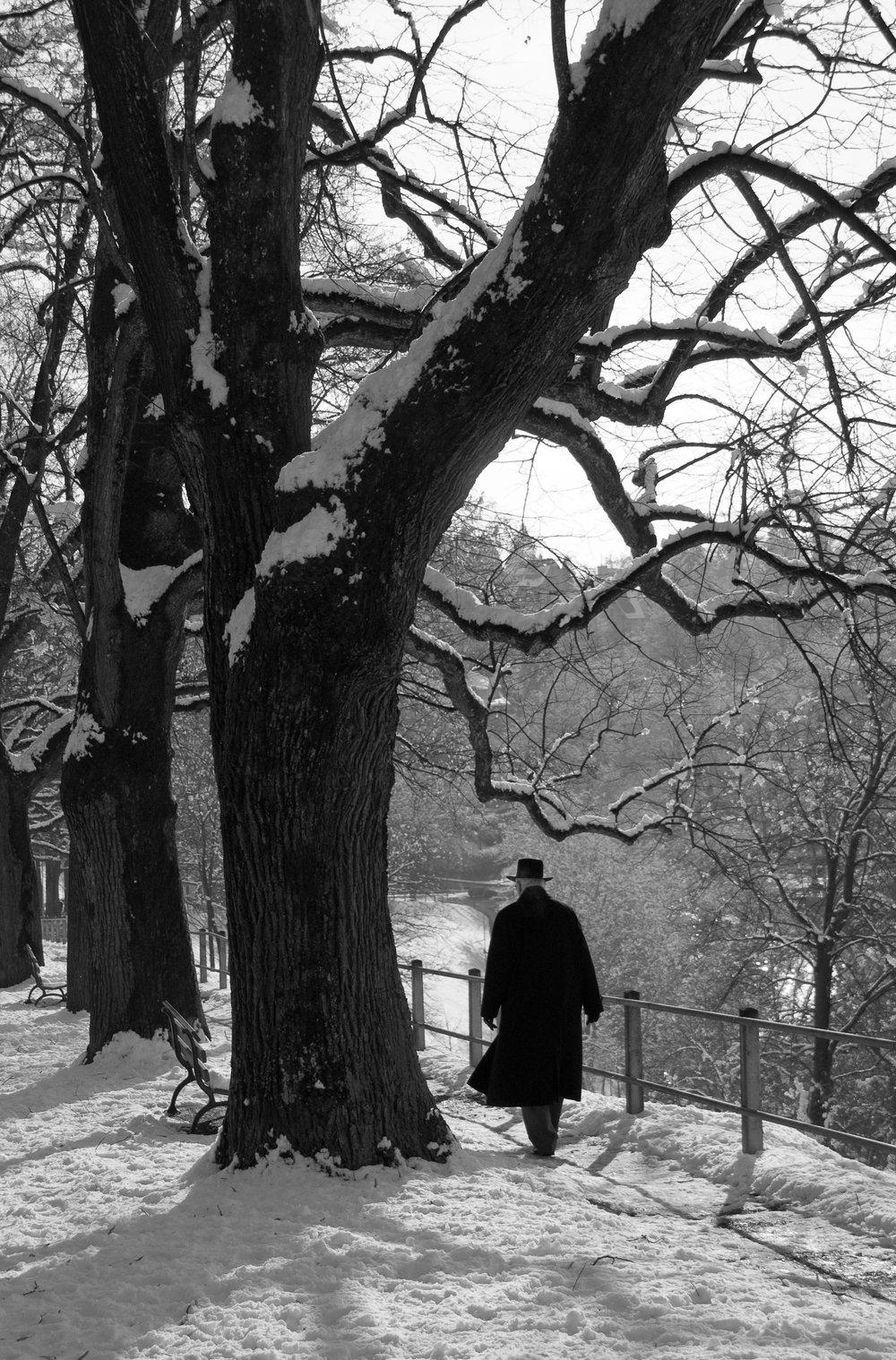 A man walks in the winter snow. Bern, Switzerland.