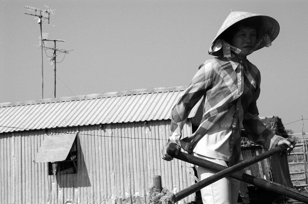 Rowing women. Vietnam