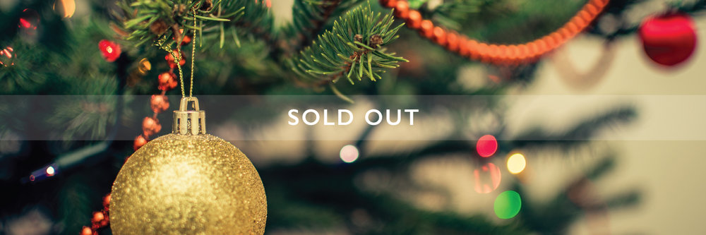 christmas-day-banner_sold-out big.jpg
