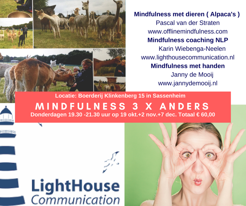 Mindfulness 3 x anders (2) (1).png