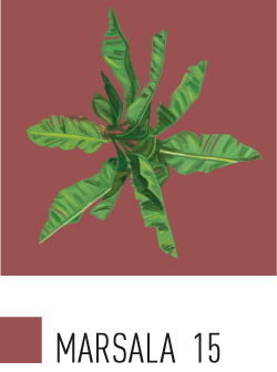 15-Marsala-Tweak-Design-Roma-Color-Palette.png