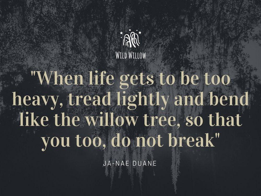 %22when life gets to be too heavy, tread lightly and bend like the willow tree, so that you too, do not break%22.jpg