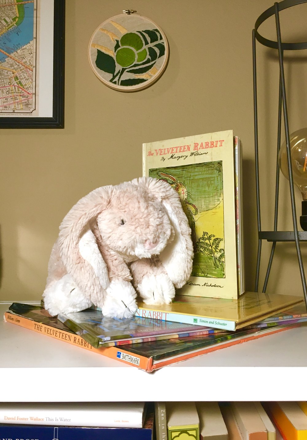 Our mascot with various editions of his biography.