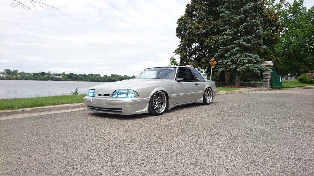 Dech.Mustang.12.jpg