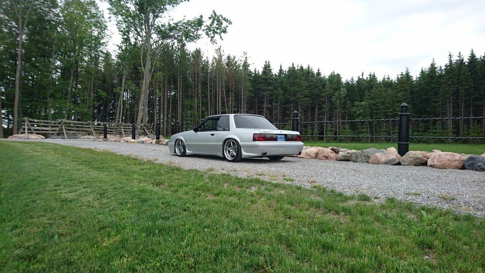 Dech.Mustang.21.jpg