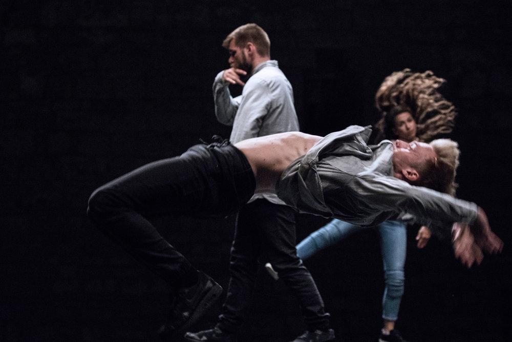 Dance & Non-Verbal Theatre Festival photo Jelena Jankovic 2017  (1) Kopie.jpg