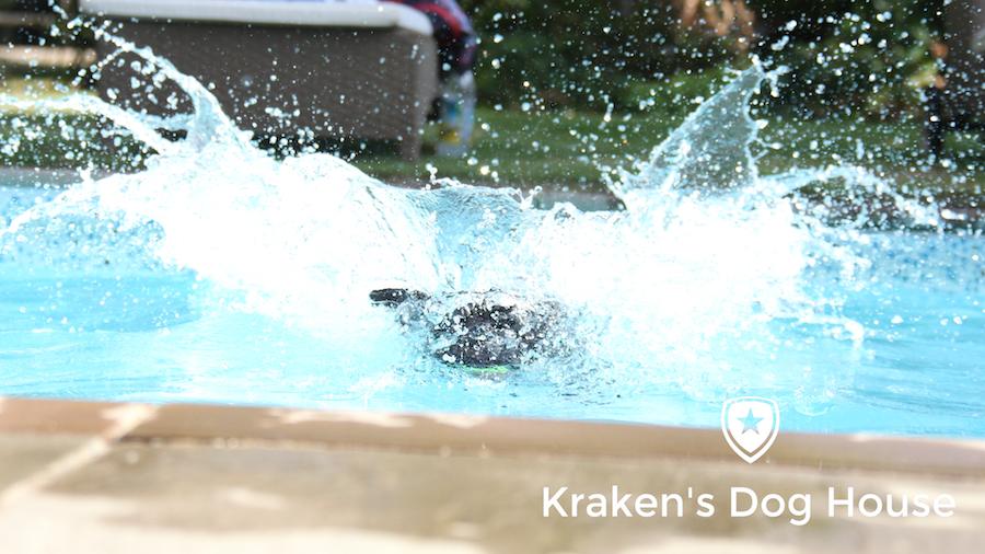 Krakens Dog House