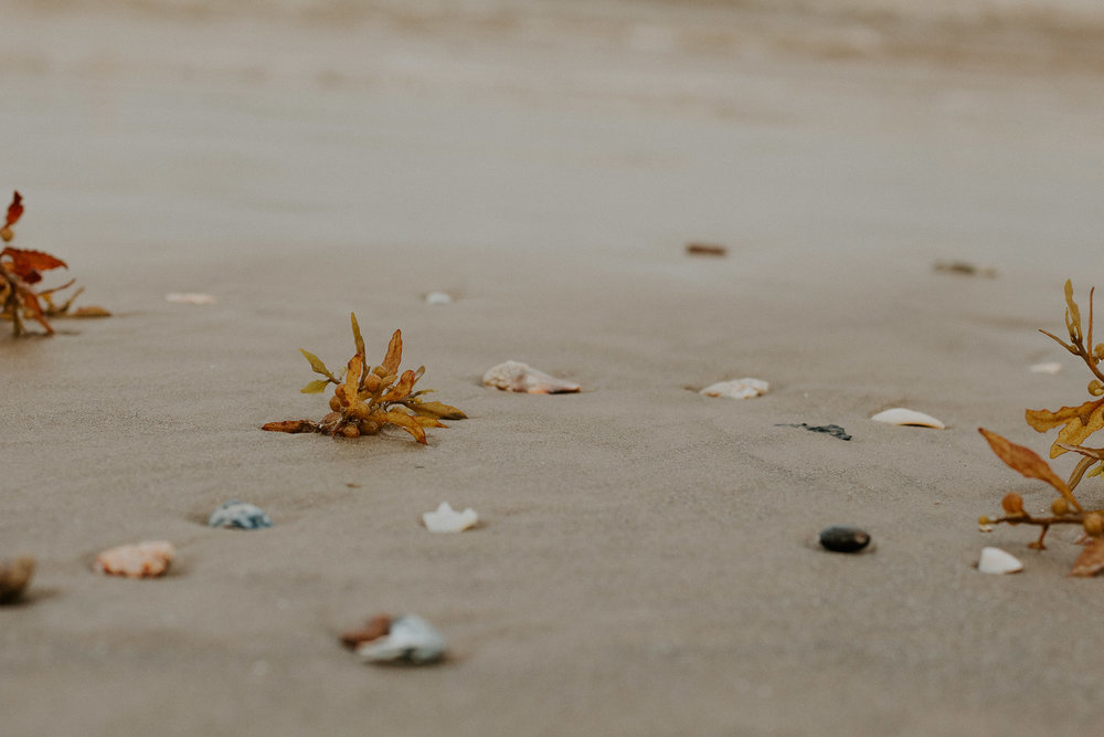 Galveston (8 of 10).jpg