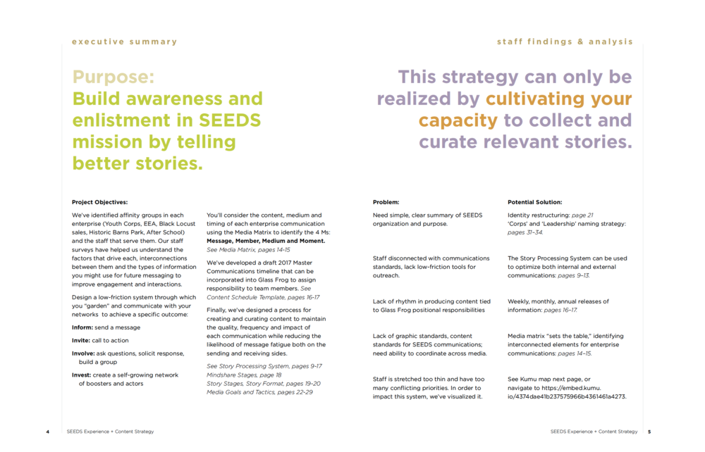SEEDS content strategy executive summary, problem statements and potential solutions.