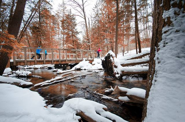 Skiers glide along one of the many trails maintained by TART volunteers in the Grand Traverse region.
