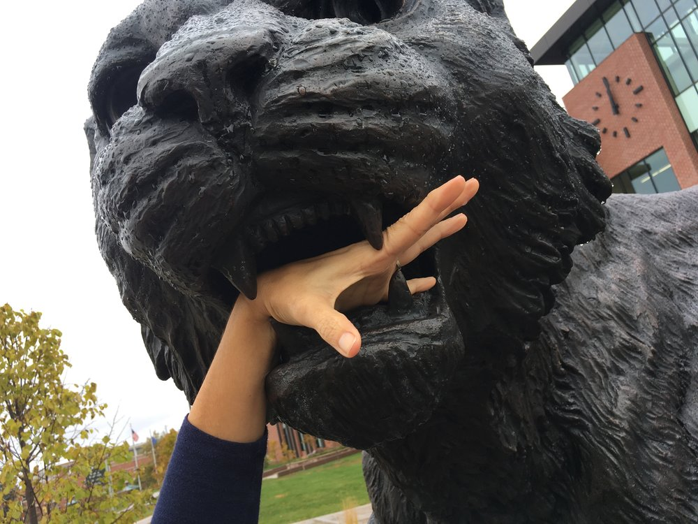 The Northern Michigan University wildcat was hungry.