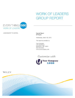 work-of-leaders-group-culture-report.jpg