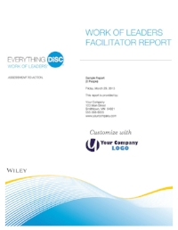 everything-disc-work-of-leaders-facilitator-report