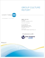 everything-disc-group-culture-report