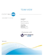 everything-disc-team-view