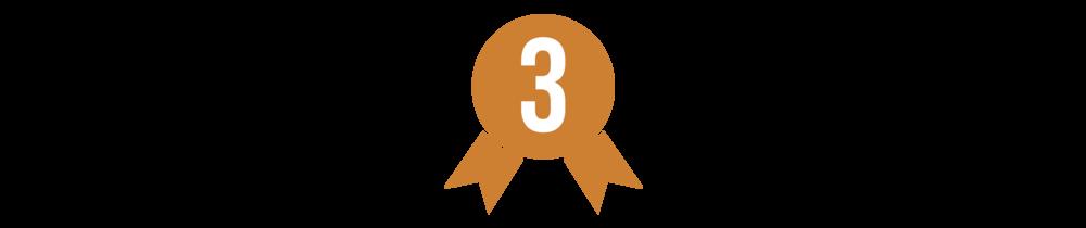 Amsoil Championship Pro Lite 2015/2016(10 wins)