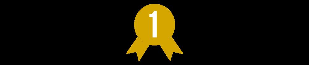 Amsoil Championship Dominator - 2016