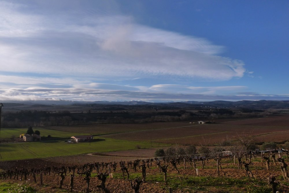 The view - beautiful countryside of Languedoc-Roussillon