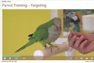 targeting.png
