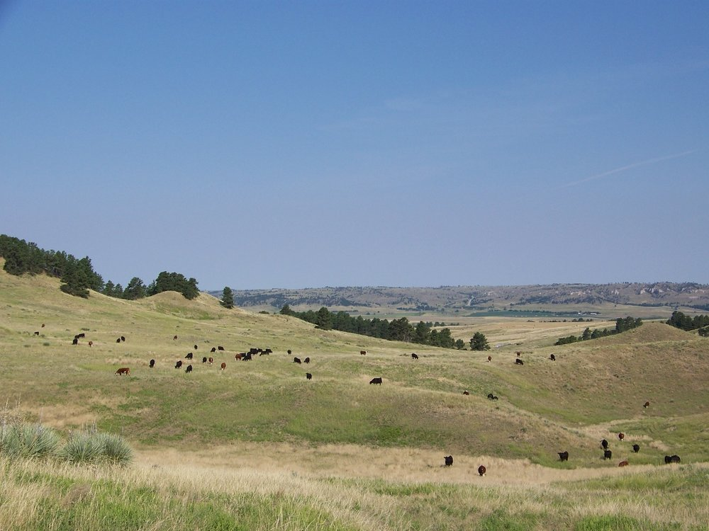 Elk Ridge Ranchland