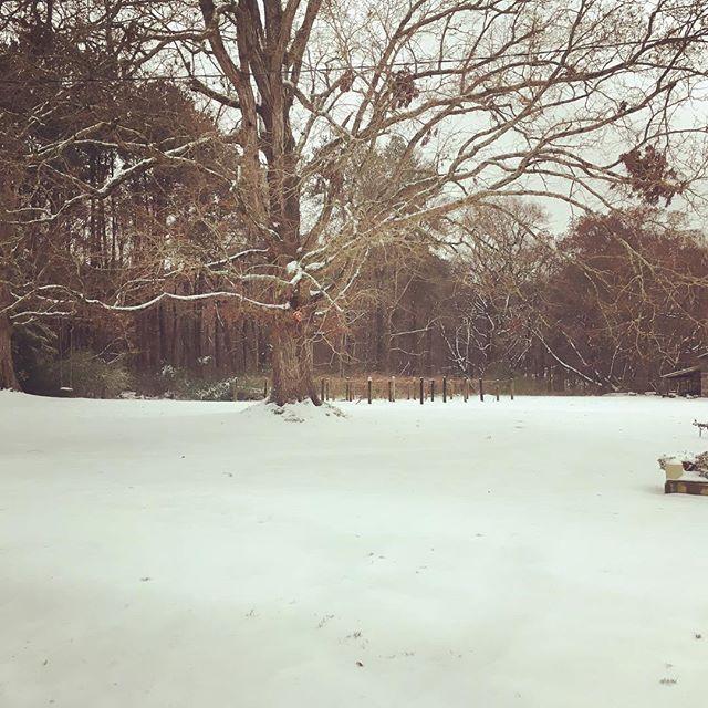 """""""Snow Day"""" fun!"""