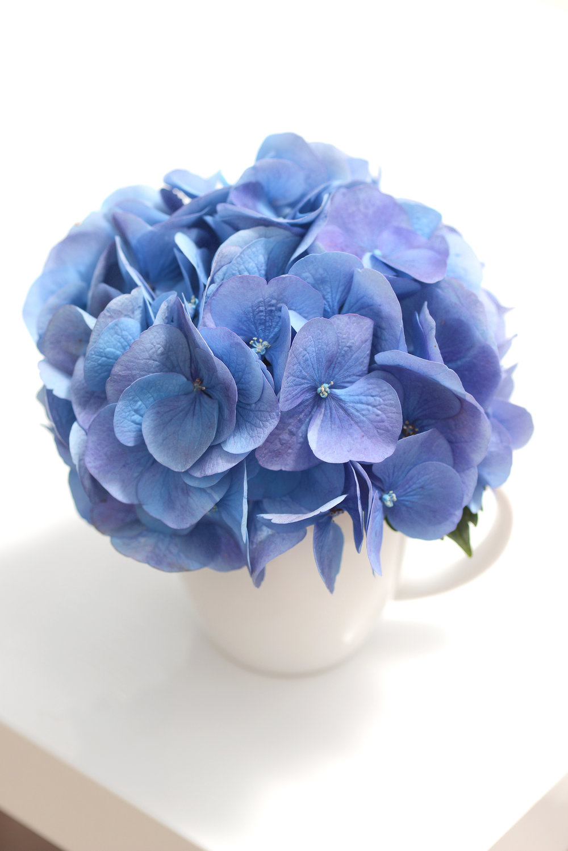 blueish-ladh-mug.jpg
