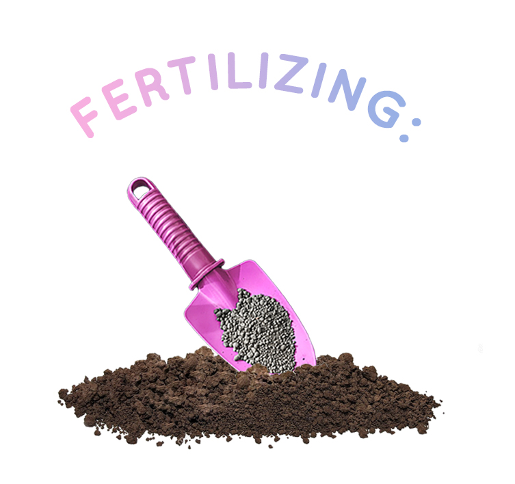 fertilizing.jpg