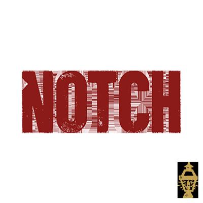 Notch.png