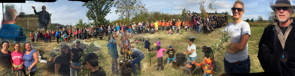 fotek tree planting event photo.png