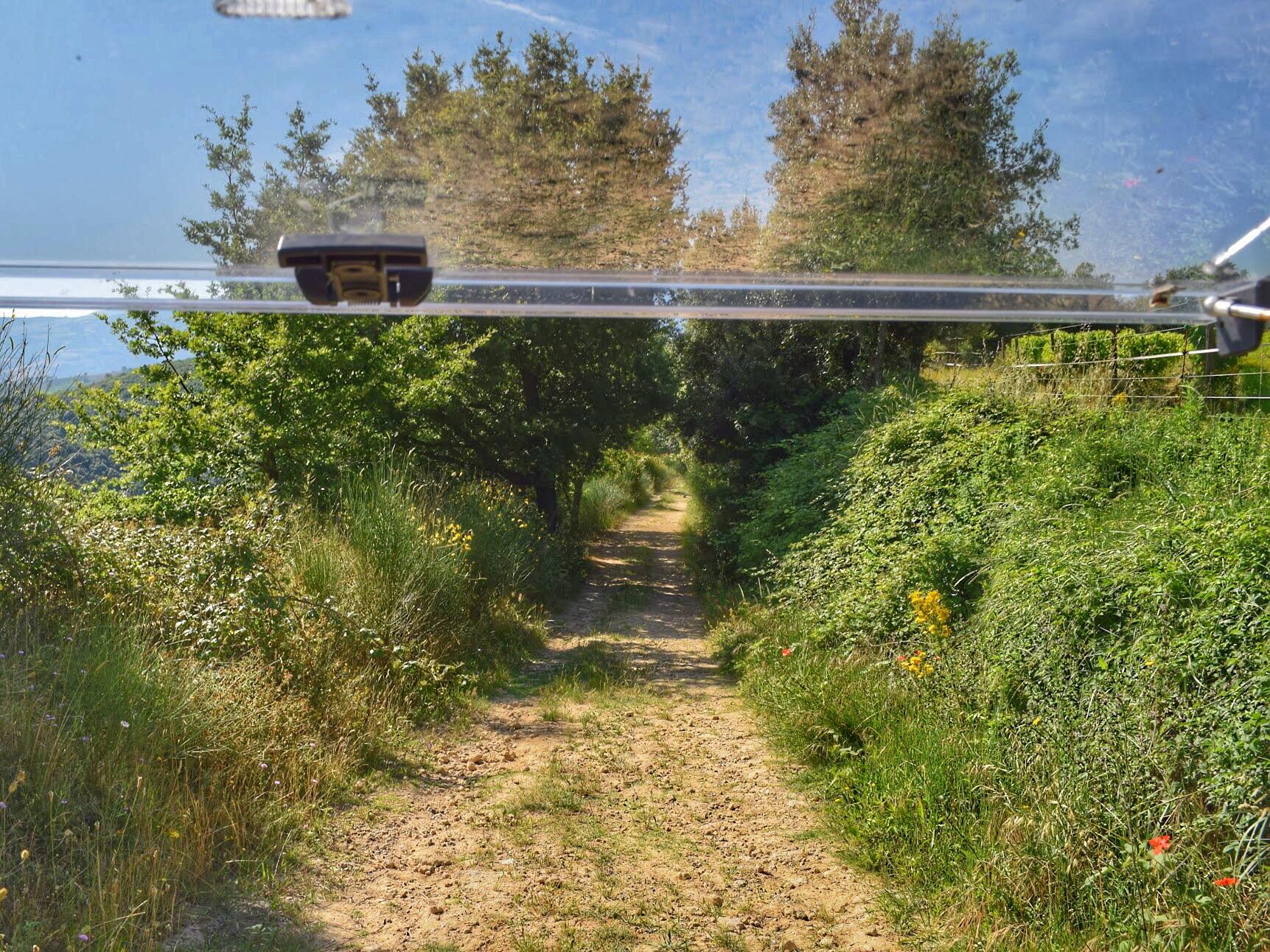 montalcino path