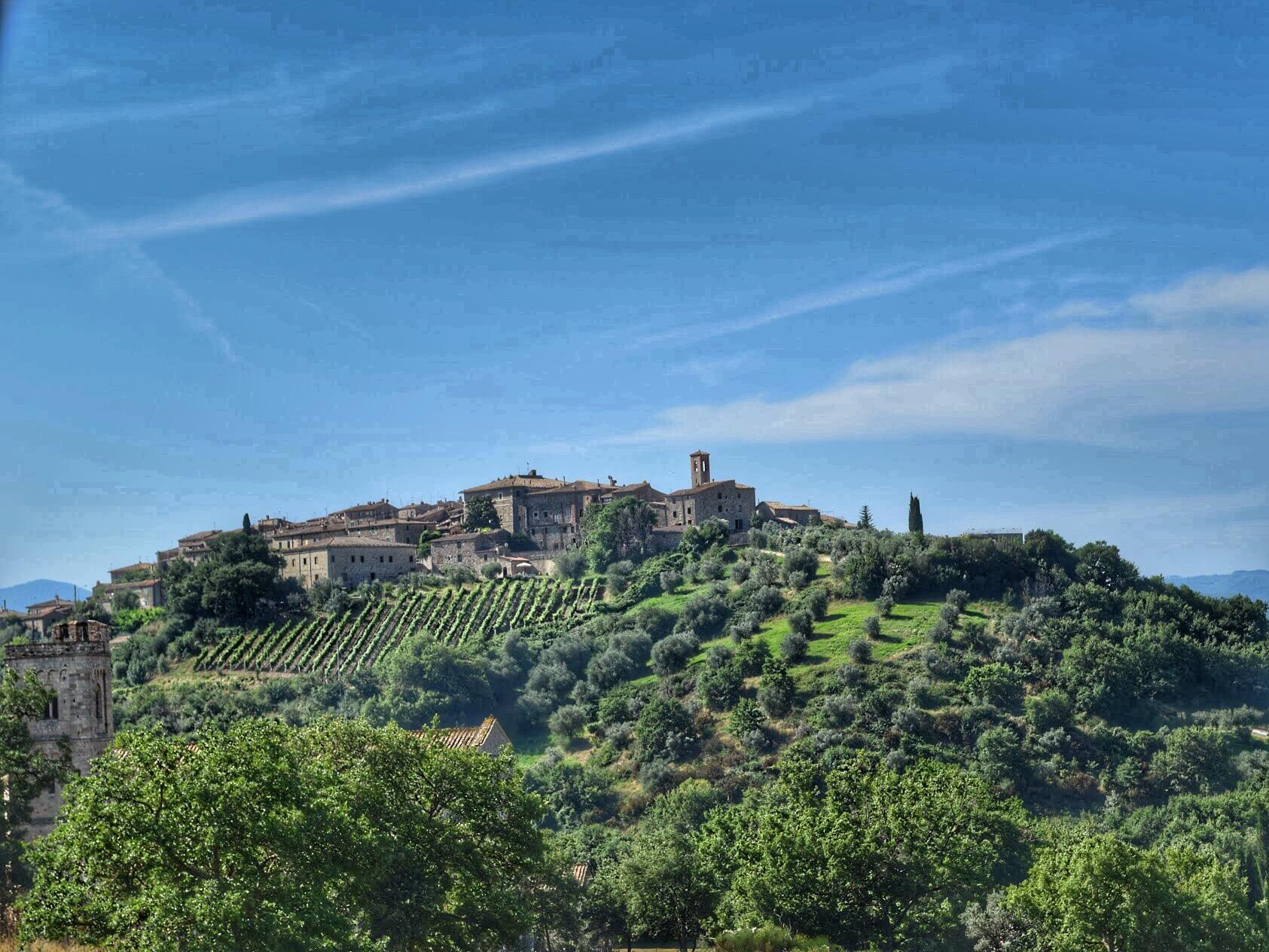 montalcino view 2