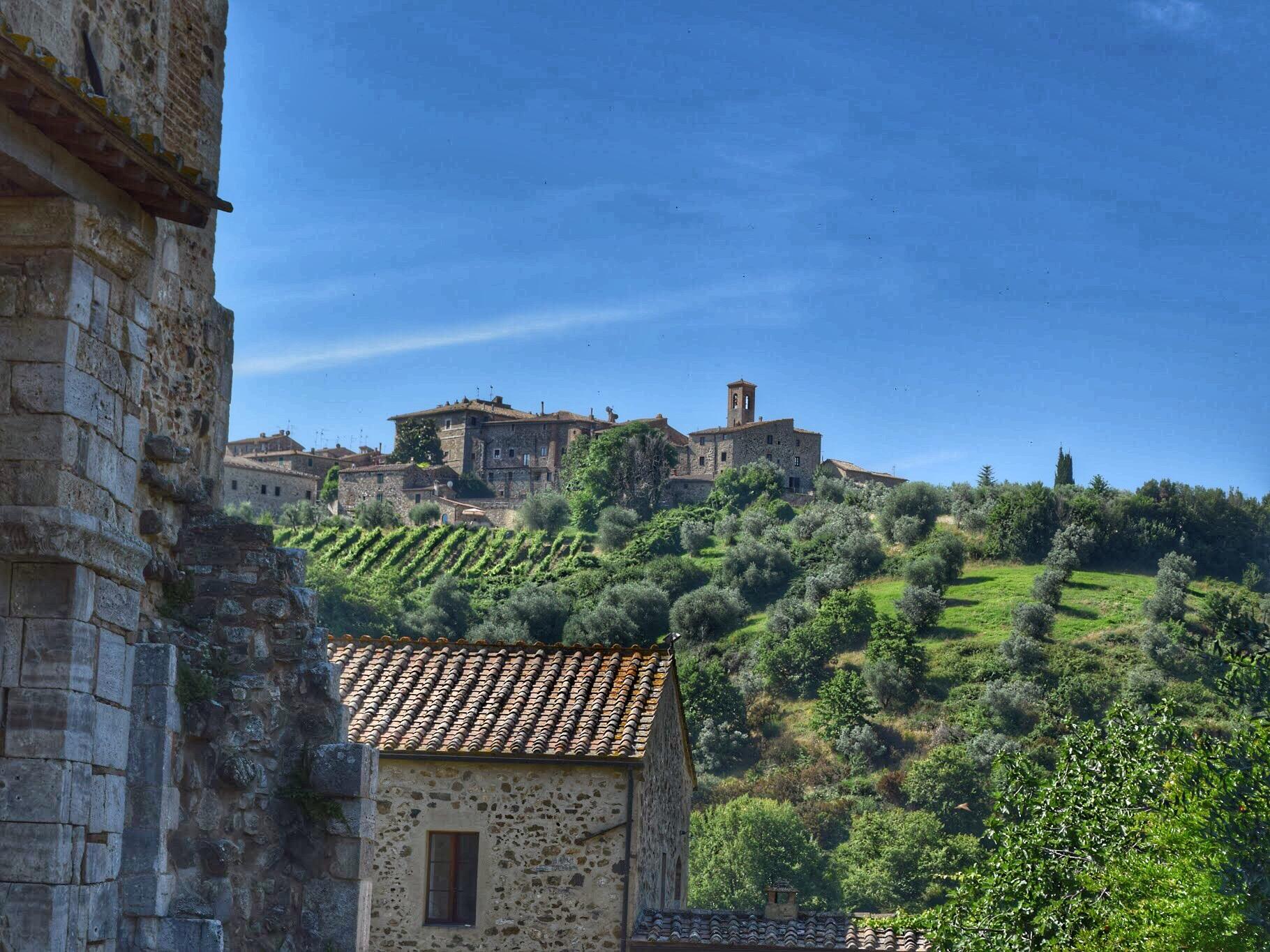montalcino hillside